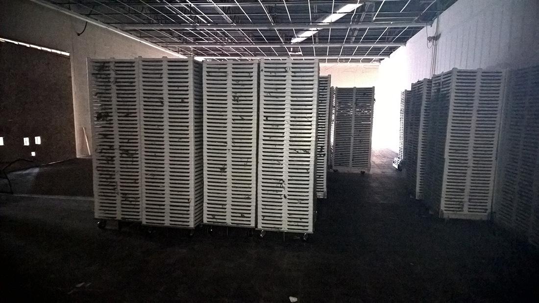 BB-2738V drying racks - marijuana drying room 100dpi